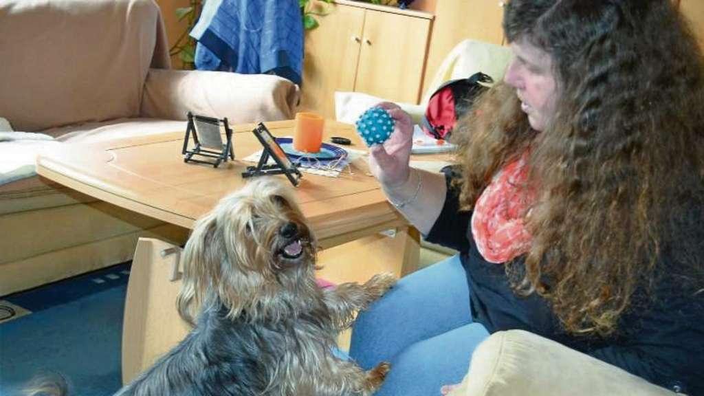 Ein Schönes Hundeleben Trotz Epilepsie Bad Salzdetfurth